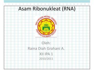 Asam Ribonukleat (RNA)