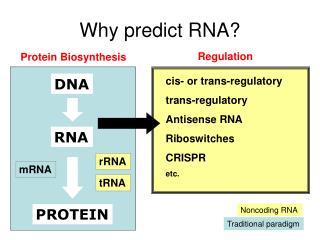 Why predict RNA?