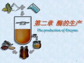 第二章 酶的生产 The production of Enzyme