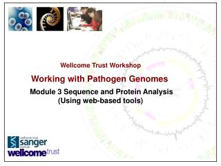 Wellcome Trust Workshop Working with Pathogen Genomes Module 3 Sequence and Protein Analysis