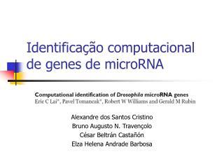 Identifica��o computacional de genes de microRNA