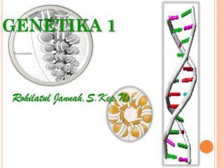 GENETIKA 1
