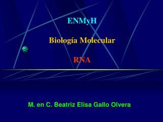 ENMyH Biología Molecular RNA