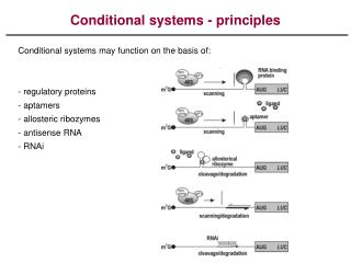 Conditional systems - principles