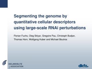Segmenting the genome by quantitative cellular descriptors using large-scale RNAi perturbations