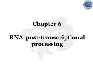 Chapter 6 RNA  post-transcriptional processing
