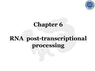 Chapter 6 RNA  post-transcriptional processing