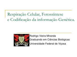 Respiração Celular, Fotossíntese e Codificação da informação Genética.