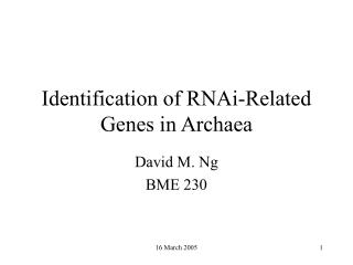 Identification of RNAi-Related Genes in Archaea
