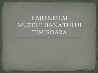 F.MU.S.EU.M MUZEUL BANATULUI TIMISOARA