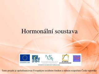 Hormon�ln� soustava
