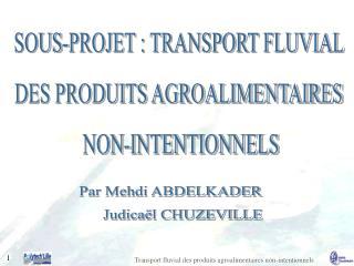 SOUS-PROJET : TRANSPORT FLUVIAL  DES PRODUITS AGROALIMENTAIRES  NON-INTENTIONNELS