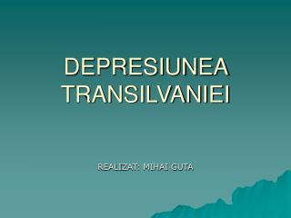 DEPRESIUNEA TRANSILVANIEI