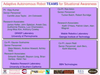 Adaptive Autonomous Robot  TEAMS  for Situational Awareness