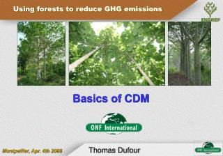 Basics of CDM