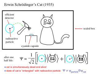 Erwin Schr ödinger's Cat (1935)