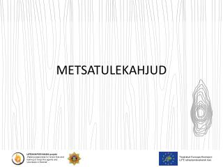 METSATULEKAHJUD