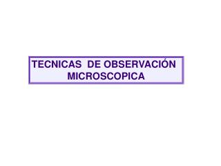 TECNICAS  DE OBSERVACIÓN  MICROSCOPICA