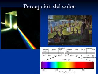 Percepción del color