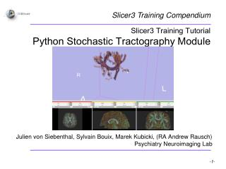 Slicer3 Training Tutorial Python Stochastic Tractography Module