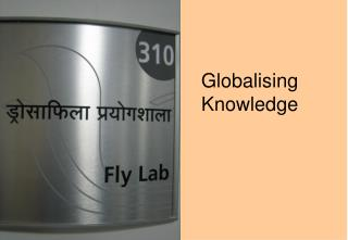Globalising Knowledge
