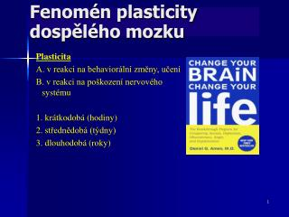 Fenomén plasticity dospělého mozku