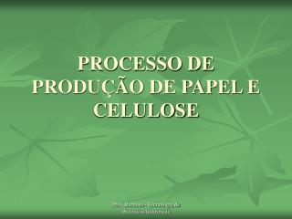 PROCESSO DE PRODUÇÃO DE PAPEL E CELULOSE