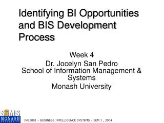 Identifying BI Opportunities and BIS Development Process