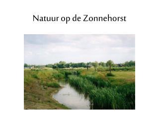 Natuur  op de Zonnehorst