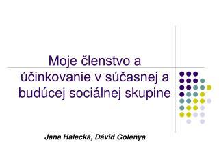 Moje členstvo a účinkovanie v súčasnej a budúcej sociálnej skupine Jana Halecká, Dávid Golenya