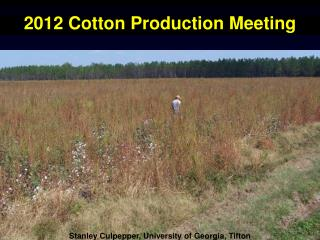 2012 Cotton Production Meeting