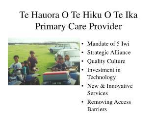 Te Hauora O Te Hiku O Te Ika Primary Care Provider