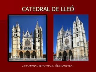 CATEDRAL DE LLE�