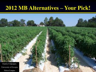 2012 MB Alternatives � Your Pick!