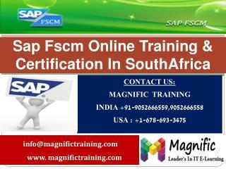 sap fscm online training in sweden,denmark
