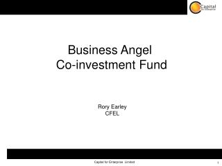 Business Angel  Co-investment Fund