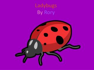 Ladybugs By  Rory