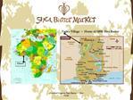 Certified Organic Shea Butter  Fair Trade