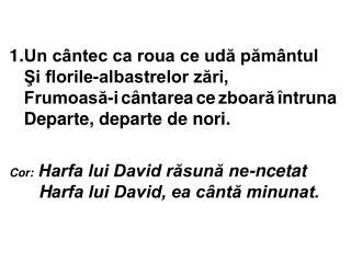 Cor : Harfa lui David răsună ne-ncetat    H arfa lui David, ea cântă minunat.
