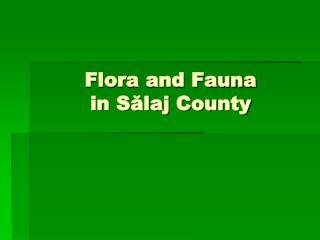Flora and Fauna  in Sălaj County