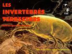 LES  INVERT BR S TERRESTRES autres que les Insectes