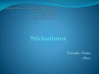 Colegiul Tehnic  de  Industrie Alimentara  : Dumitru Motoc Clasa  a-11-a A Anul scolar  2009-2010