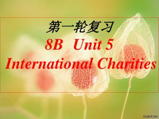 第一轮复习 8B   Unit 5  International Charities