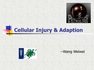 Cellular Injury & Adaption