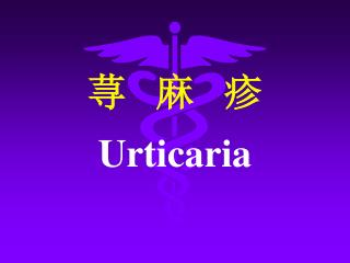 荨   麻   疹 Urticaria