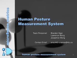 Human Posture Measurement System