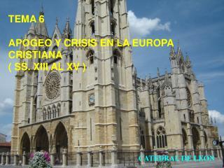 TEMA 6 APOGEO Y CRISIS EN LA EUROPA CRISTIANA ( SS. XIII AL XV )