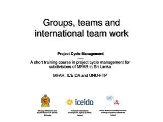 Groups, teams and international team work