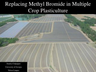Replacing Methyl Bromide in Multiple Crop Plasticulture