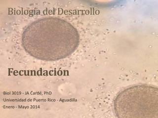 Biología del Desarrollo Fecundación